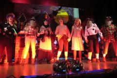 Musik-und-Gesangsverein-MGV-Concordia-Schifferstadt-Fasching-2019-Frauen-auf-der-Bühne